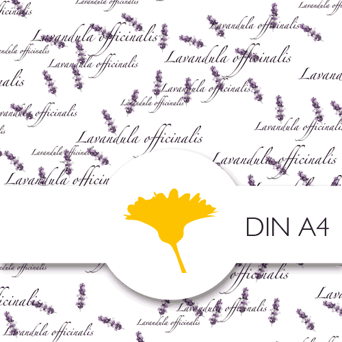 Schmuckpapier »Lavendel« von Olionatura®